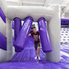 Ryze Inflatable Theme  Park